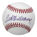 Ted Williams Single Signed OAL Brown Baseball (PSA/DNA)