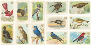 "1900s-1930s Church & Dwight ""Birds"" Complete Sets Collection (7 Different)"